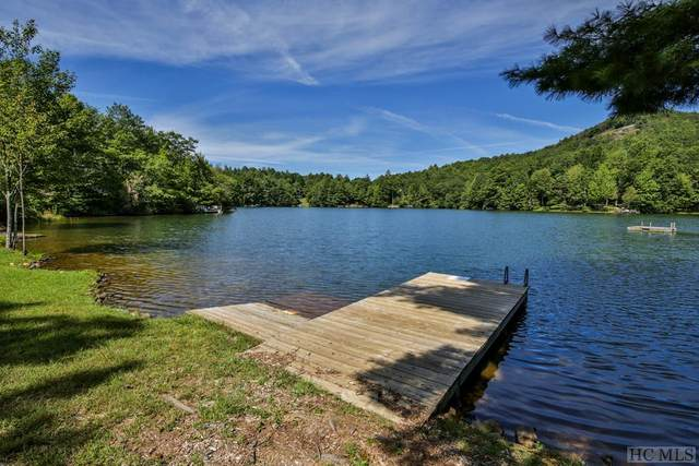 905 Lakeside Drive, Scaly Mountain, NC 28775 (MLS #94636) :: Pat Allen Realty Group