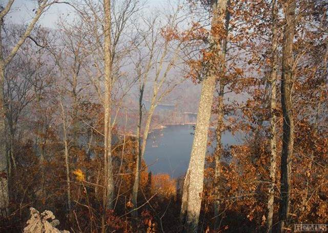 Lot #270 Nannyberry Lane, Tuckasegee, NC 28783 (MLS #94739) :: Berkshire Hathaway HomeServices Meadows Mountain Realty