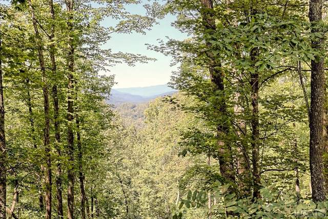 Lot 246 Beautyberry Court, Tuckasegee, NC 28723 (MLS #94787) :: Berkshire Hathaway HomeServices Meadows Mountain Realty