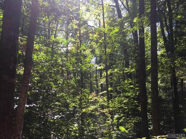 126 Whisper Lake Drive, Sapphire, NC 28774 (MLS #94817) :: Pat Allen Realty Group