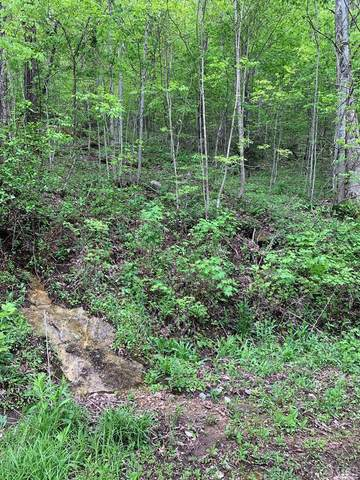 Lot 86 Valley Overlook Drive, Glenville, NC 28736 (MLS #94874) :: Berkshire Hathaway HomeServices Meadows Mountain Realty