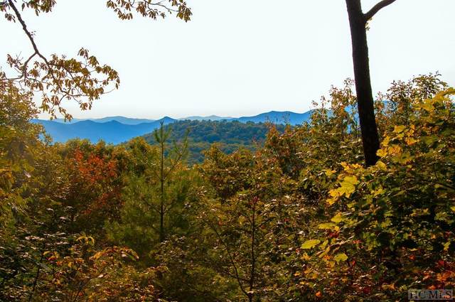 418 Eastside Duck Mountain Road, Scaly Mountain, NC 28775 (MLS #94887) :: Pat Allen Realty Group