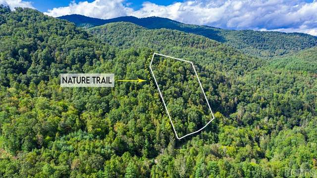Lot 35 Waterdance Drive, Tuckasegee, NC 28783 (MLS #94895) :: Berkshire Hathaway HomeServices Meadows Mountain Realty