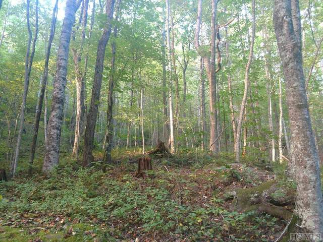 Lot 25 Cherokee Trace, Cashiers, NC 28717 (MLS #94896) :: Berkshire Hathaway HomeServices Meadows Mountain Realty