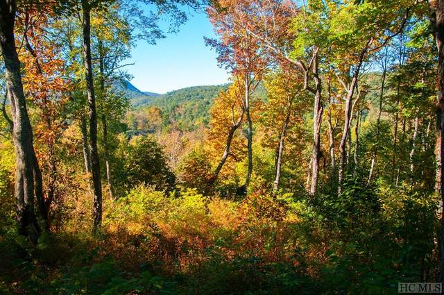 TBD Willow Way, Highlands, NC 28741 (MLS #94903) :: Berkshire Hathaway HomeServices Meadows Mountain Realty