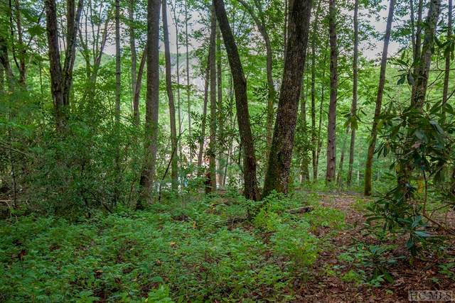 Lot 118 Lonesome Valley Rd, Sapphire, NC 28774 (MLS #94976) :: Berkshire Hathaway HomeServices Meadows Mountain Realty