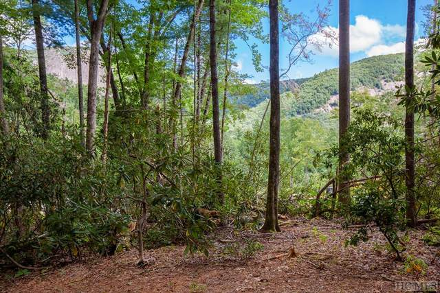 Lot 119 Lonesome Valley Rd, Sapphire, NC 28774 (MLS #94977) :: Berkshire Hathaway HomeServices Meadows Mountain Realty