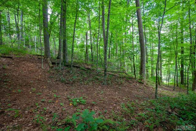 Lot 120 Lonesome Valley Rd, Sapphire, NC 29871 (#94978) :: Exit Realty Vistas
