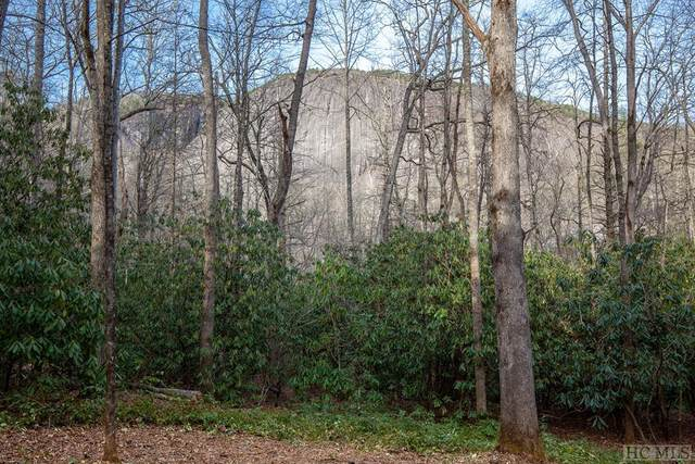 Lot 54 Lonesome Valley Rd, Sapphire, NC 28774 (#94987) :: Exit Realty Vistas