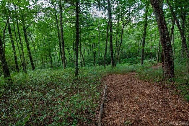 Lot 78 Long Lake Trail, Sapphire, NC 28774 (MLS #94990) :: Berkshire Hathaway HomeServices Meadows Mountain Realty