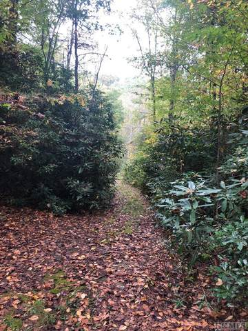Lot 3 Yellow Mountain Road, Cashiers, NC 28717 (MLS #95020) :: Berkshire Hathaway HomeServices Meadows Mountain Realty