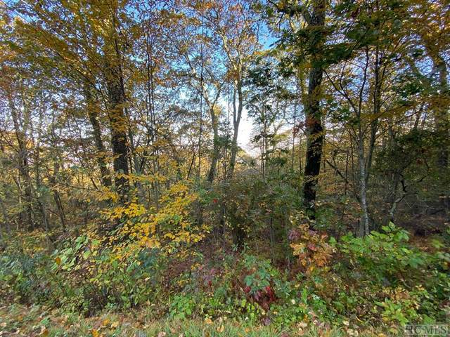 Lot 14B Catspaw Road, Cullowhee, NC 28723 (MLS #95028) :: Berkshire Hathaway HomeServices Meadows Mountain Realty