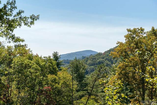 4201 Cullowhee Forest Road, Cullowhee, NC 28723 (#95030) :: Exit Realty Vistas