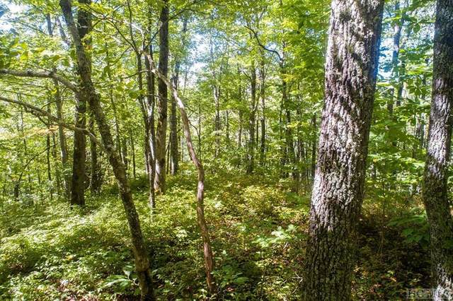 Lot 238 Crossvine Drive, Tuckasegee, NC 28783 (MLS #95066) :: Berkshire Hathaway HomeServices Meadows Mountain Realty
