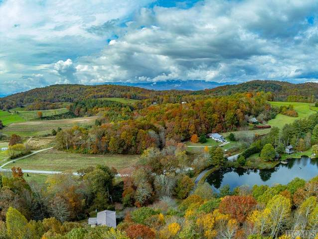 90 & 91 Strawberry Branch Drive, Scaly Mountain, NC 28775 (MLS #95142) :: Pat Allen Realty Group