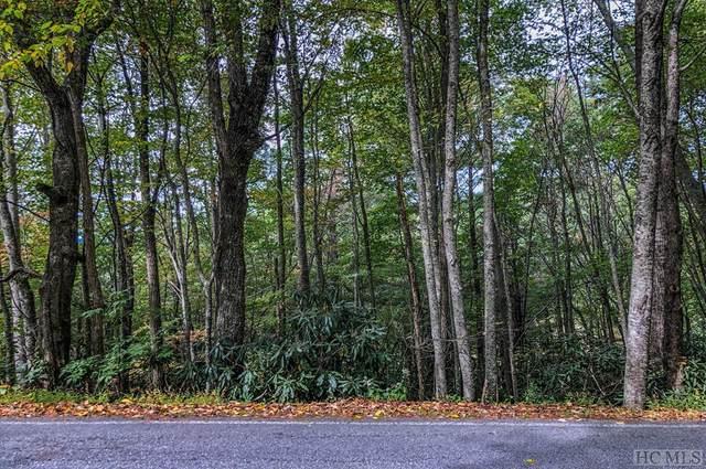 Lot 1 Ridgepole Drive, Sky Valley, GA 30537 (MLS #95159) :: Berkshire Hathaway HomeServices Meadows Mountain Realty
