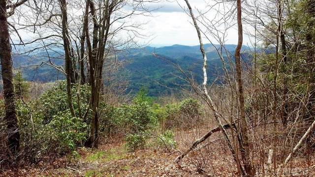 Lot B Tower Road, Sapphire, NC 28774 (MLS #95162) :: Berkshire Hathaway HomeServices Meadows Mountain Realty