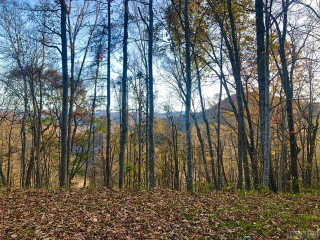 Lot 49 Parachute Ridge, Glenville, NC 28736 (MLS #95171) :: Berkshire Hathaway HomeServices Meadows Mountain Realty