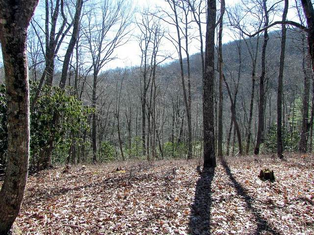 0 tbd Osito Lane, Cullowhee, NC 28723 (MLS #95185) :: Berkshire Hathaway HomeServices Meadows Mountain Realty