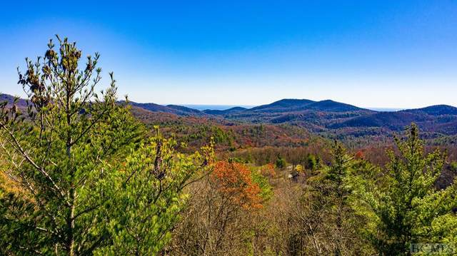 Lot #21 Southeast Ridge Road, Cashiers, NC 28717 (MLS #95277) :: Pat Allen Realty Group