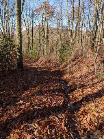 0 Mill Creek Road, Cullowhee, NC 28723 (MLS #95289) :: Pat Allen Realty Group