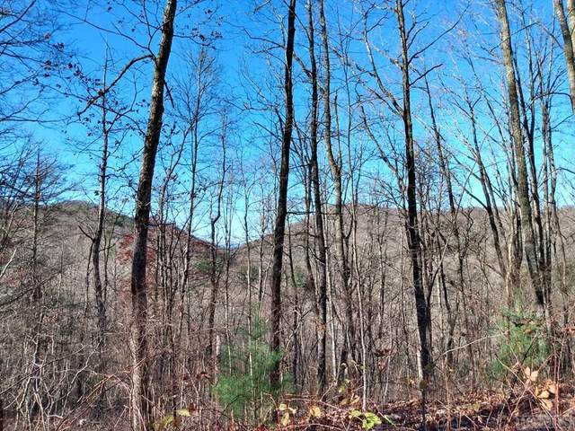 0 Mill Creek Road, Cullowhee, NC 28723 (MLS #95295) :: Berkshire Hathaway HomeServices Meadows Mountain Realty