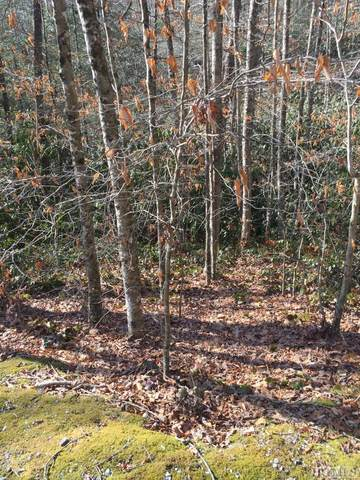 LOT F-3 Fenley Forest Road, Cashiers, NC 28717 (MLS #95305) :: Pat Allen Realty Group