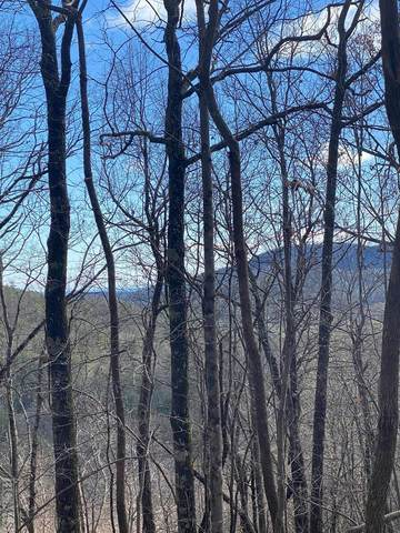 8 Meadow Crest Drive, Cashiers, NC 28717 (#95399) :: BluAxis Realty