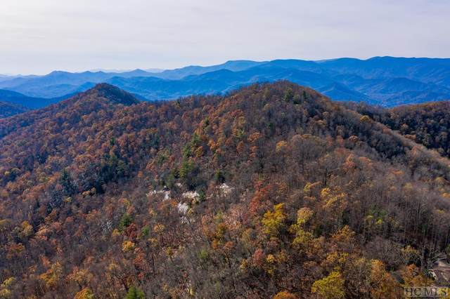 0 Buck Knob, Scaly Mountain, NC 28775 (MLS #95405) :: Pat Allen Realty Group