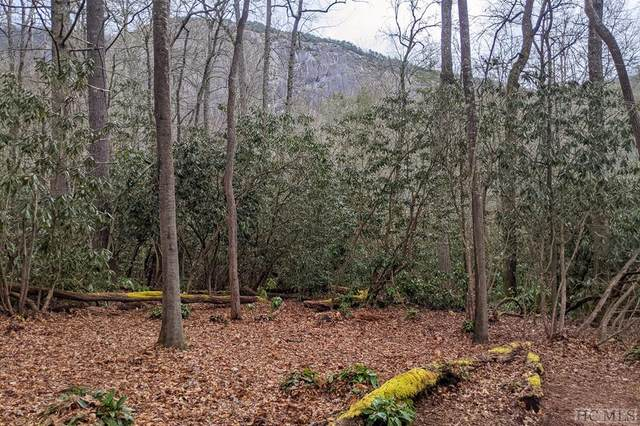 Lot 56 Lonesome Valley Rd, Sapphire, NC 28774 (#95413) :: Exit Realty Vistas