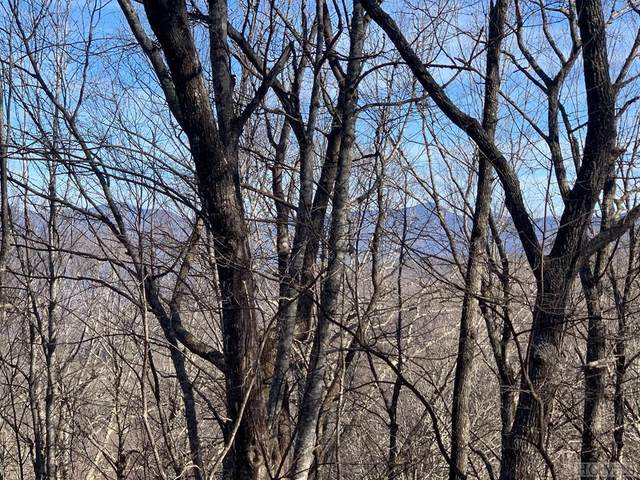 Lot 5 Buffalo Mountain Road, Glenville, NC 28736 (MLS #95427) :: Berkshire Hathaway HomeServices Meadows Mountain Realty