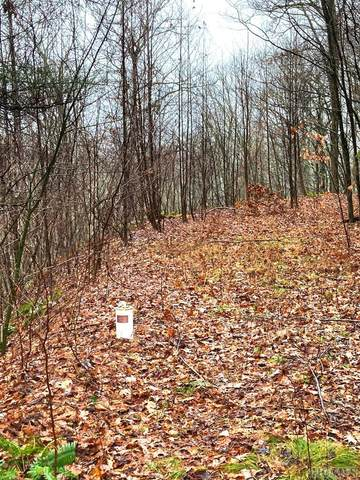 Lot 19 Highland Gap Road, Scaly Mountain, NC 28779 (MLS #95429) :: Pat Allen Realty Group