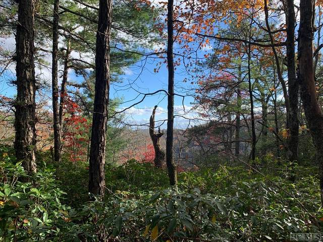 Lot 21 Toxaway Court, Lake Toxaway, NC 28747 (MLS #95440) :: Pat Allen Realty Group