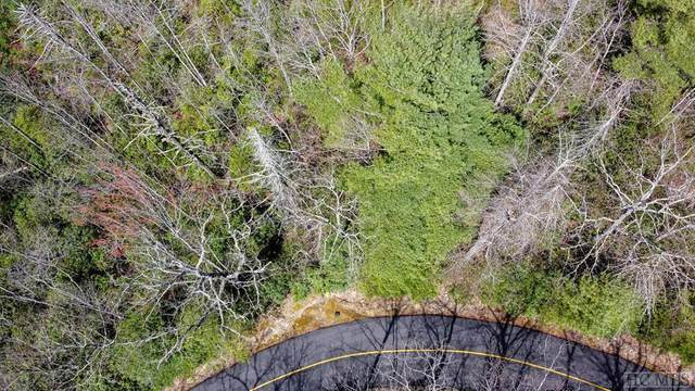 LT 10 Rock Creek Court, Sapphire, NC 28774 (MLS #95473) :: Berkshire Hathaway HomeServices Meadows Mountain Realty
