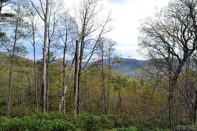 Lot 1a Sorrel Lane, Sapphire, NC 28774 (MLS #95478) :: Berkshire Hathaway HomeServices Meadows Mountain Realty