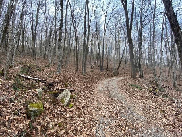 LOT 3G Buckhead Drive, Cullowhee, NC 28723 (MLS #95502) :: Berkshire Hathaway HomeServices Meadows Mountain Realty