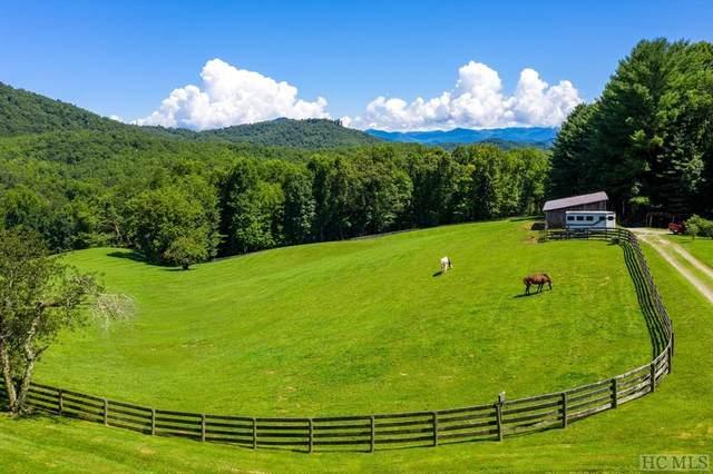 657 Smoky Ridge Rd., Cullowhee, NC 28723 (MLS #95503) :: Berkshire Hathaway HomeServices Meadows Mountain Realty