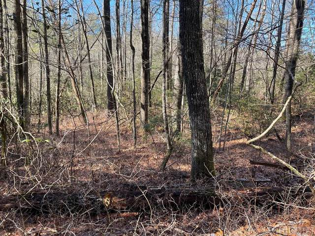 Lot 114 Whiterwater Road, Sapphire, NC 28774 (MLS #95572) :: Pat Allen Realty Group