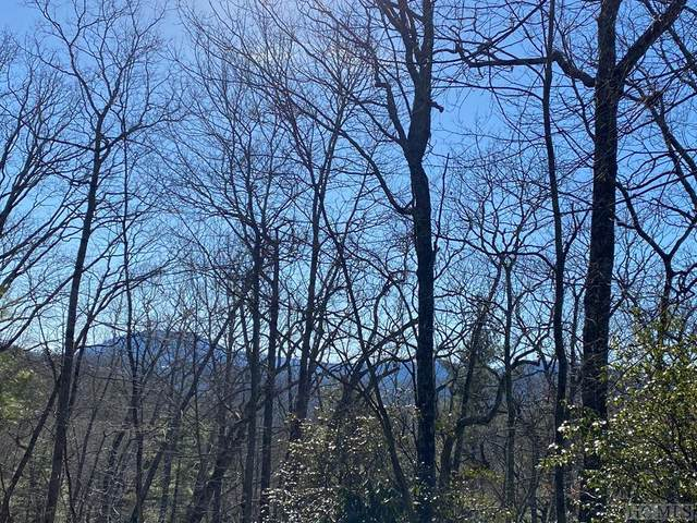 Lot 1 Forest Ridge Road, Cashiers, NC 28717 (MLS #95628) :: Berkshire Hathaway HomeServices Meadows Mountain Realty
