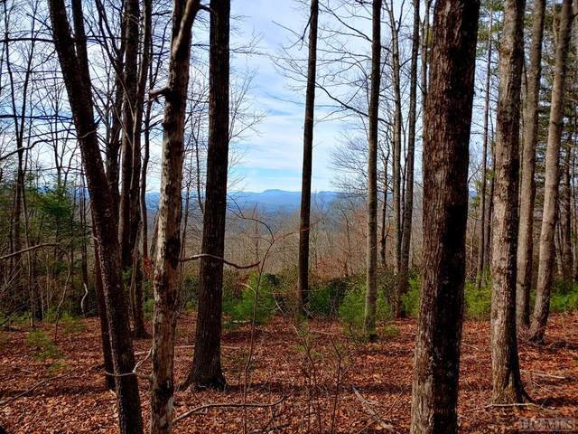 0 Reserve Road, Pisgah Forest, NC 28768 (MLS #95687) :: Berkshire Hathaway HomeServices Meadows Mountain Realty
