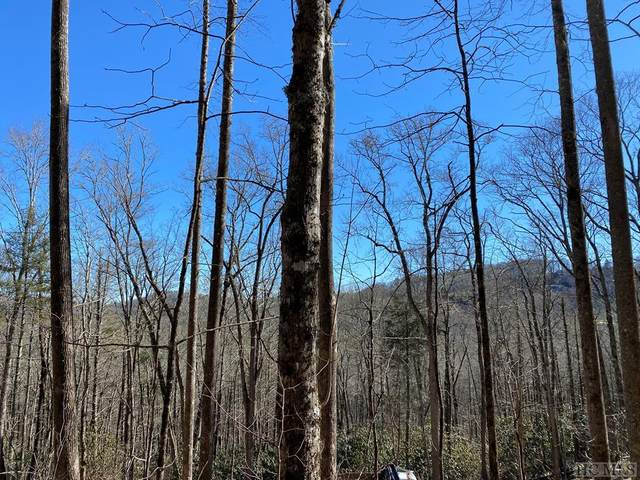 Lot 11 Glencove Drive, Cashiers, NC 28717 (MLS #95702) :: Berkshire Hathaway HomeServices Meadows Mountain Realty