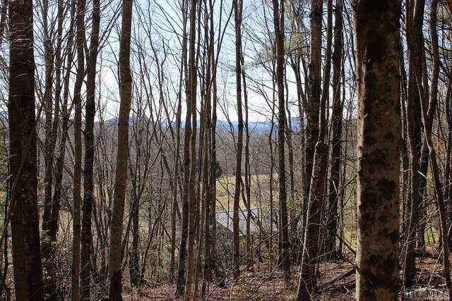 TBD Buck Creek Road, Highlands, NC 28741 (MLS #95764) :: Pat Allen Realty Group