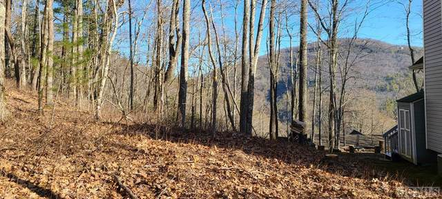 Lot #96 Kestrel Court, Sapphire, NC 28774 (MLS #95776) :: Pat Allen Realty Group