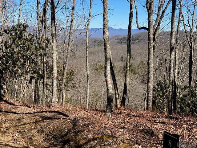 Lot 8 Trailhead Way, Glenville, NC 23736 (MLS #95783) :: Berkshire Hathaway HomeServices Meadows Mountain Realty