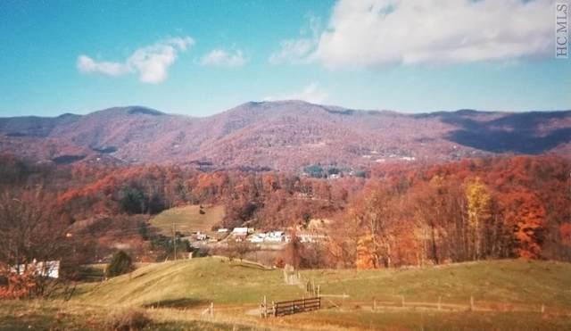 00 Skyland Road, Waynesville, NC 28786 (MLS #95786) :: Berkshire Hathaway HomeServices Meadows Mountain Realty