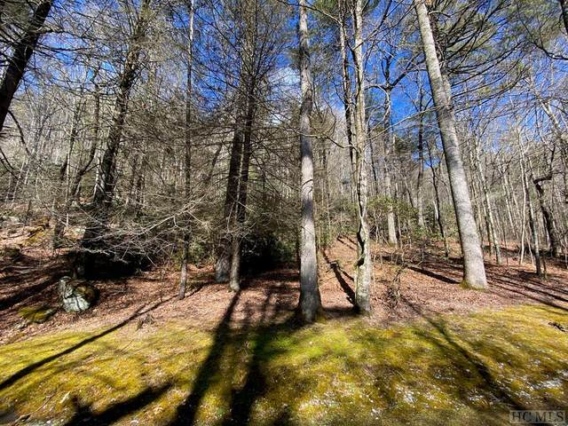 Lot N55 Chimney Top Tr., Cashiers, NC 28717 (MLS #95803) :: Pat Allen Realty Group