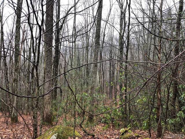 Lot 53 Rocky Top Drive, Cashiers, NC 28717 (MLS #95828) :: Pat Allen Realty Group