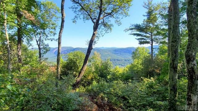Tr 21b Twin Ridge Trail, Sapphire, NC 28774 (MLS #95841) :: Pat Allen Realty Group