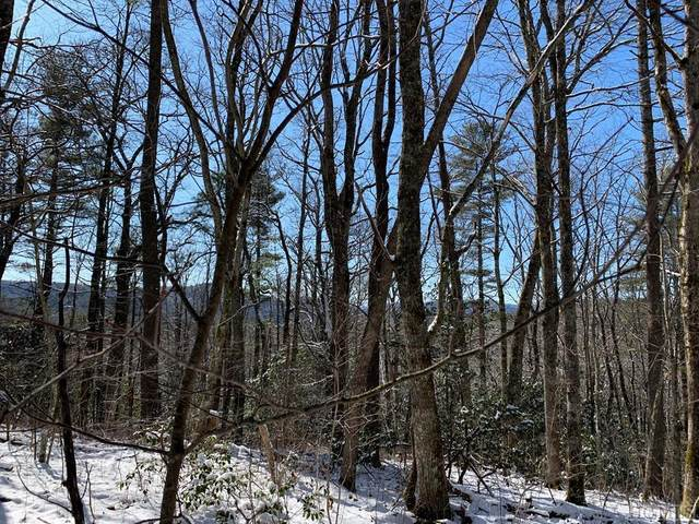 TBD Wingina Place, Highlands, NC 28741 (MLS #95855) :: Pat Allen Realty Group