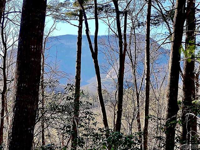 Lot M36 Ambient Way, Cashiers, NC 28717 (MLS #95874) :: Berkshire Hathaway HomeServices Meadows Mountain Realty